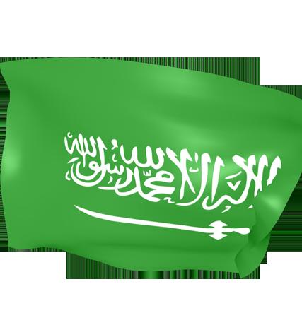 استضافة سعودية رسمية